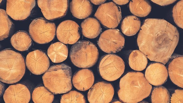 Lumber Shortages: What This Means For You